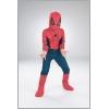 Spiderman Movie Child 10-12